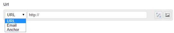 URL Field Types